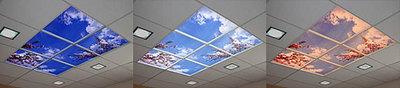 sky-ceiling.jpg