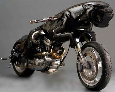 cat-bikemain_iKxfv_5784.jpg