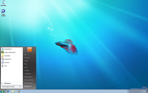 windows-7-fish.jpg