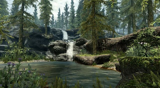 Skyrim_Forest_Stream.jpg