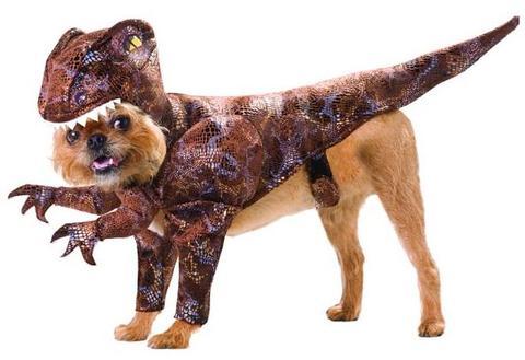 T-rex dog