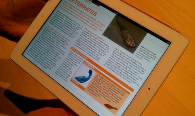 new-ipad-3-06.jpg