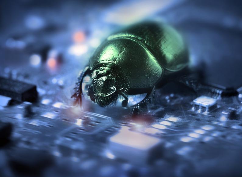 bug-on-computer-chip